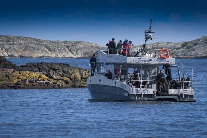 En fantastiskt fotohelg på Väderöarna med Olympos. Ett stort tack till Scandinavian Photo