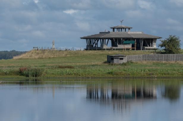 Hornborgasjön-14