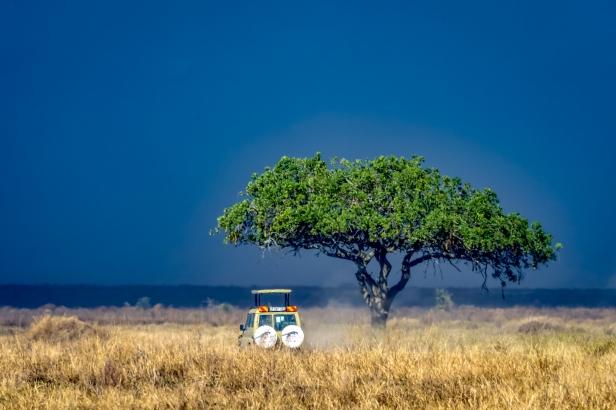 Serengeti57
