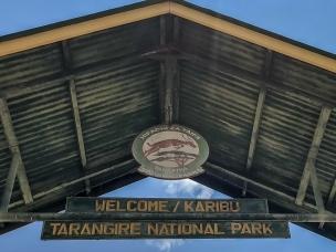Entre´till Tarangire National Park